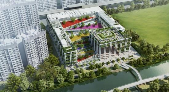 Проект поликлиники Oasis Terrace в Сингапуре от Serie Architects