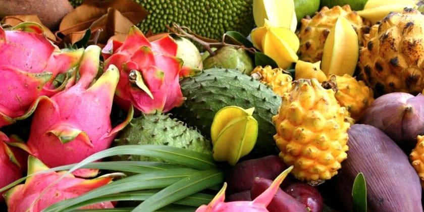 Почему бы не выращивать тропические плоды в своем доме