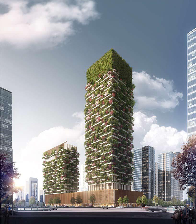 «Вертикальный лес» в Китае