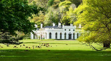Продается замок в Ирландии семьи Гиннесс   цена, фото, видео