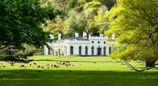 Продается замок в Ирландии семьи Гиннесс | цена, фото, видео