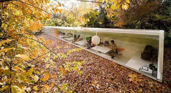 Selgas Cano построила офис в лесу для сотрудников | фото