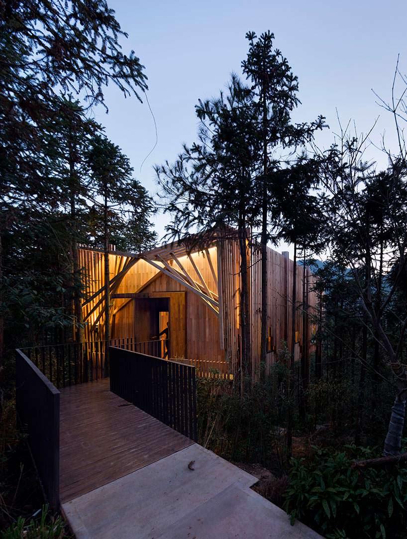 Фото | Дом выходного дня на дереве treehouse M