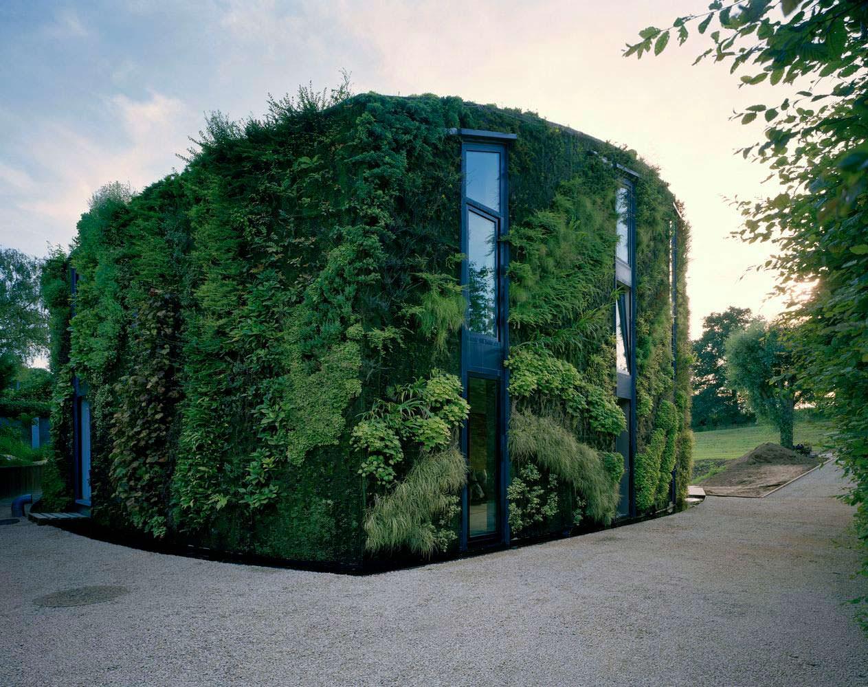 Дом с живым фасадом в Брюсселе от SAMYN and PARTNERS