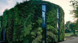 Дом с живым фасадом в Брюсселе от SAMYN and PARTNERS | фото