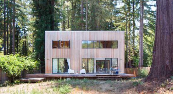 Идеальный дом посреди красных деревьев на окраине леса | фото