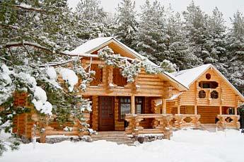 Защита древесины от плесени и грибка