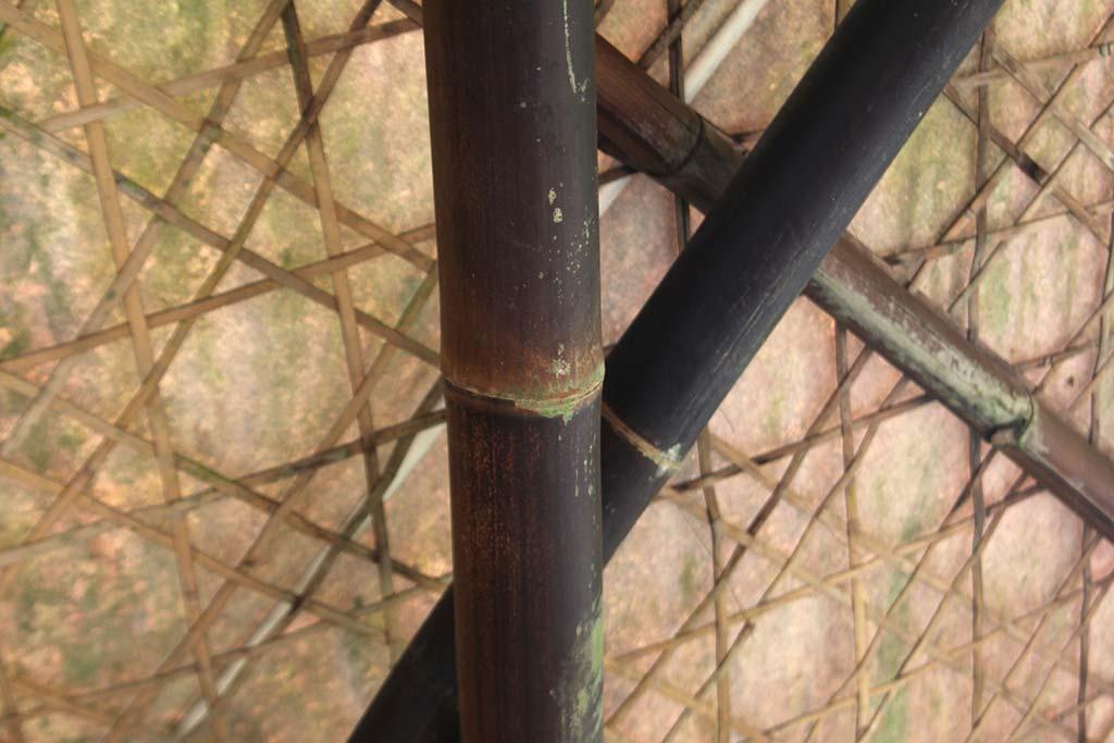 Бамбуковый мост от IBUKU
