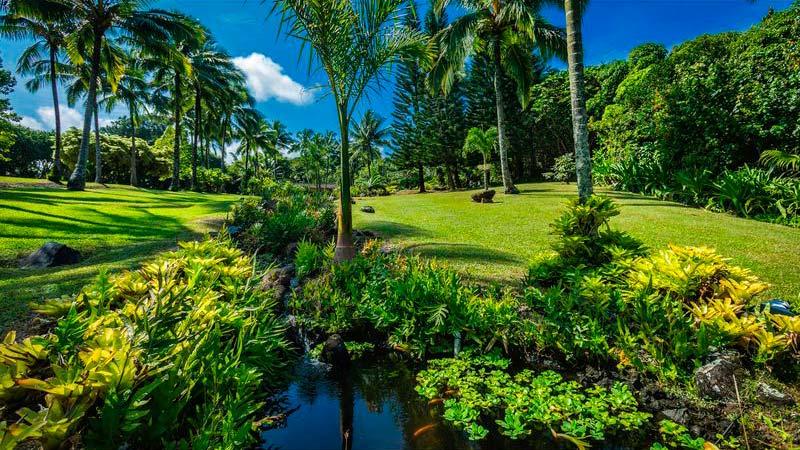 Тропический рай Сэмми Хагара на Гавайях