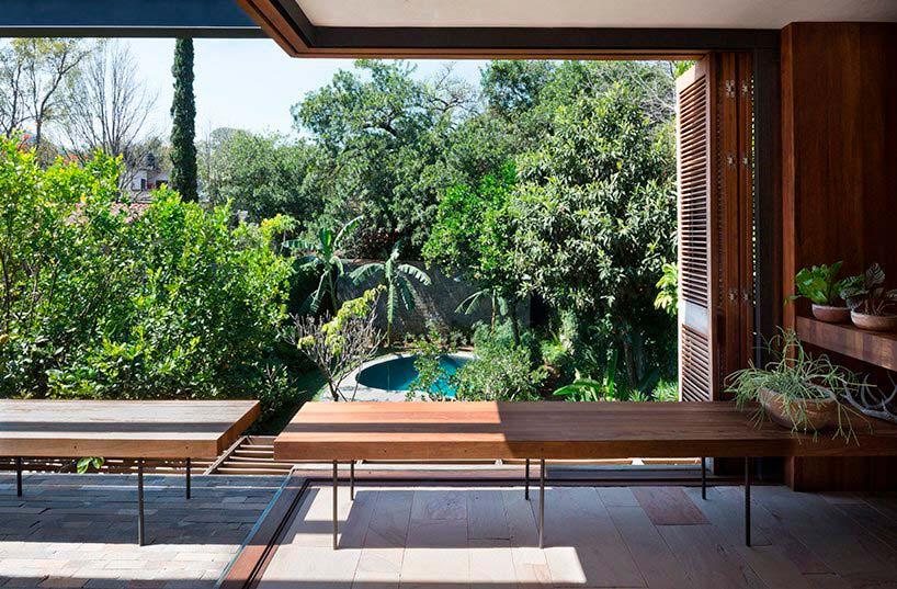 Вид на мексиканские джунгли из дома