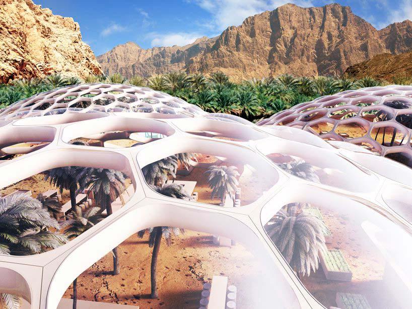 Центр охраны дикой природы Biodomes в ОАЭ