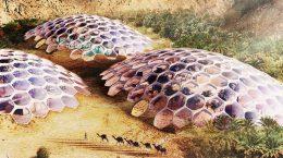 В ОАЭ построят энергонезависимый центр охраны дикой природы