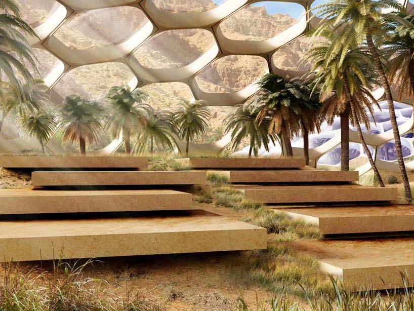 Проект Центра охраны дикой природы Biodomes