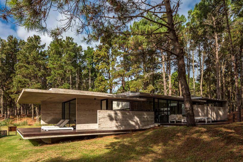 Бетонный дом в тени дерева от Besonías Almeida Arquitectos