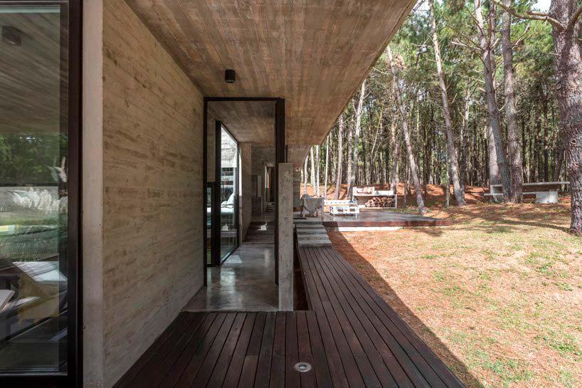 Деревянная терраса бетонного дерева в Буэнос-Айресе