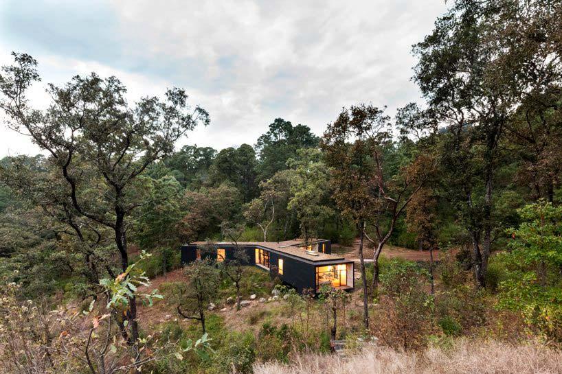 Уединенный дом в лесу. Проект Cadaval & Solà-Morales