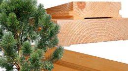 Пиломатериалы из хвойных пород древесины: особенности, виды, преимущества, ГОСТы