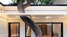 Wutopia Lab построила дом с китайским садом внутри | фото