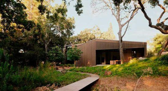 Дом в дубовой роще от Field Architecture | фото