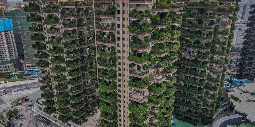 ЖК с вертикальным лесом в Чэнду на 826 квартир пустует из-за комаров