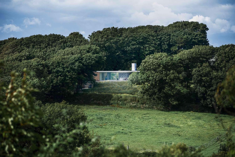 Дом посреди деревьев. Проект Strom Architects