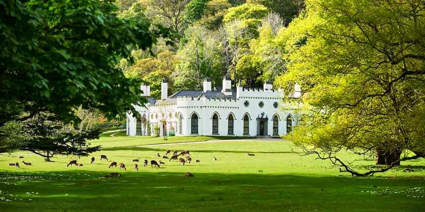 Замок в Ирландии семьи Гиннесс продаётся