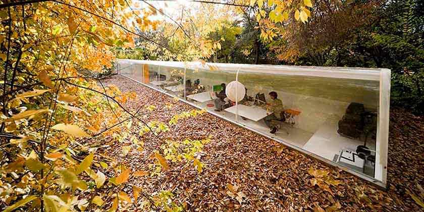 Студия Selgas Cano построила офис в лесу для сотрудников