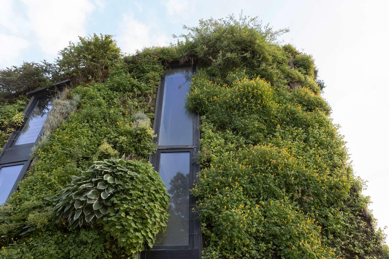 Заросший фасад эко-дома от SAMYN and PARTNERS