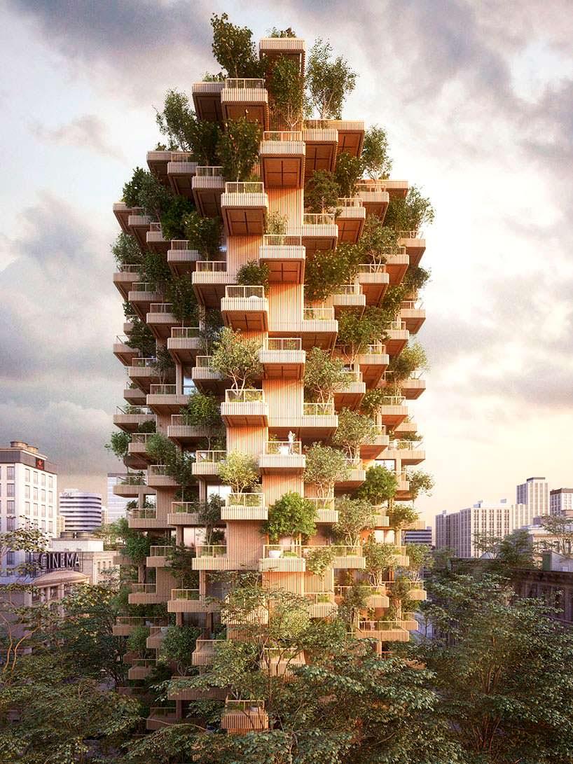 Фото | Деревянный небоскреб в Торонто от Penda + Timber