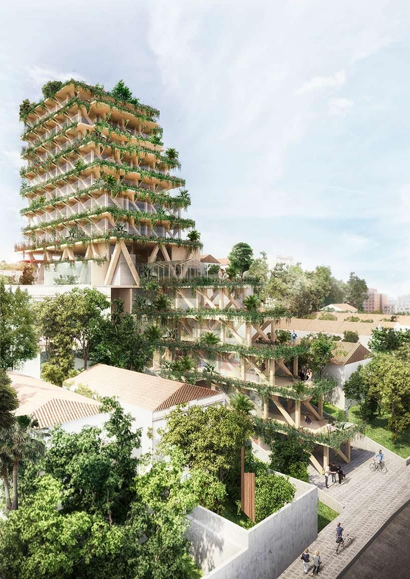 Башня из бразильской древесины