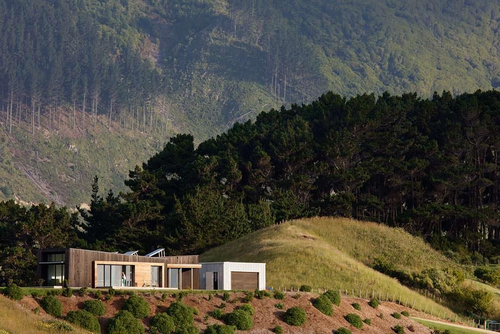 Дом на вершине холма рядом с сосновым лесом
