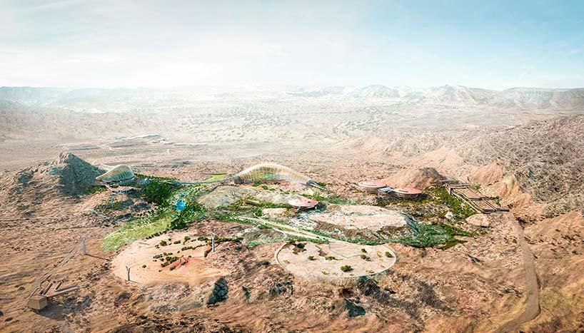 Ботанический сад на дне древнего моря в Омане