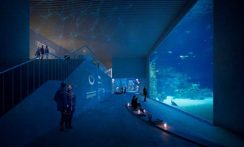 Стеклянная стена аквариума «Царство Посейдона»