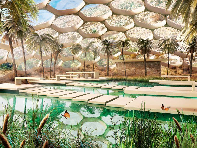 Центр охраны дикой природы Biodomes. Проект