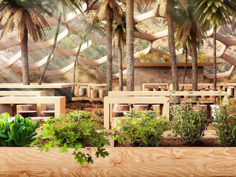 Центр охраны дикой природы Biodomes. Проект Baharash Architecture