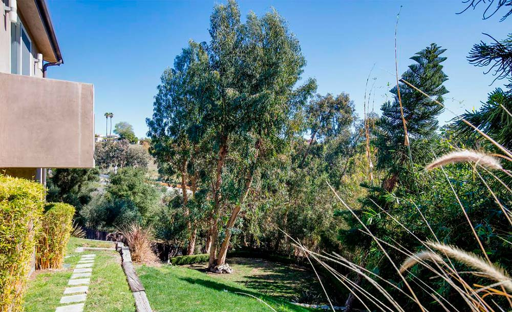 Травянистый двор у дома Билли Боб Торнтона