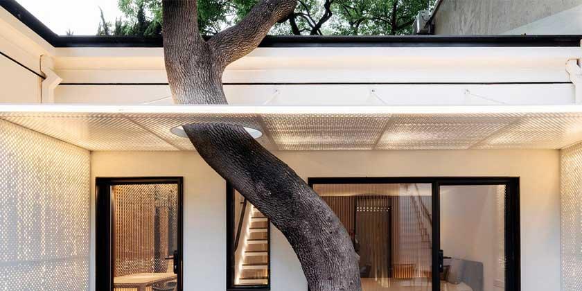 Wutopia Lab построила дом с китайским садом внутри